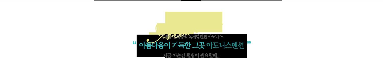 """Adonis 유럽풍 건축양식 독체형펜션 아도니스"""" 아름다움이 가득한 그곳 아도니스펜션 """"지금 이순간 힐링이 필요할때..."""