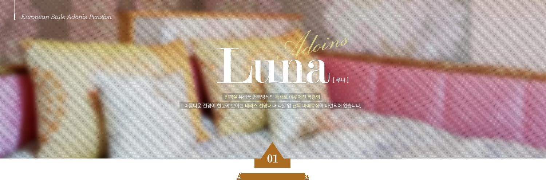 European Style Adonis Pension Luna [ 루나 ] 전객실 유럽풍 건축양식의 독채로 이루어진 복층형 아름다운 전경이 한눈에 보이는 테라스 전망대과 객실 앞 단독 바베큐장이 마련되어 있습니다. 01 Adonis Room & Luna
